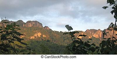 Mountains and jungle from Londa to Kete Kesu - Rantepao - Sulawesi island - Indonesia - Panorama.