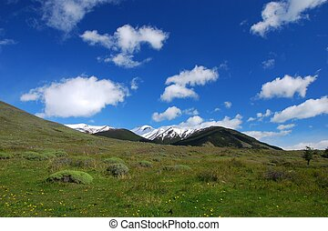 Mountains and meadow in Patagonia - Patagonian meadow and...