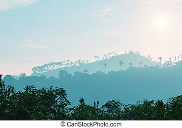 Mountains and trees silhouettes at sunset, Ceylon