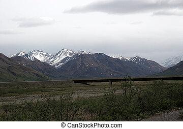 Mountains Denali park