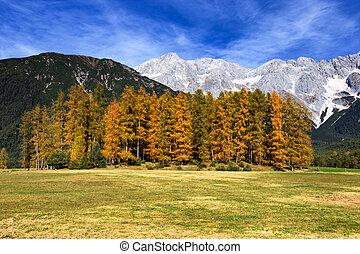 Mountains in autumn. Mieminger Plateau, Tyrol, Austria.