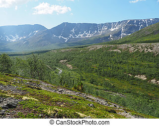 mountains in summer