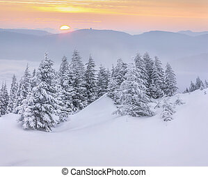 Mountains in the morning mist. Wintwer sunrise.