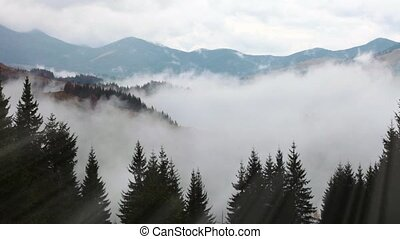 Mountains in Ukraine early morning with fog and Ray light.