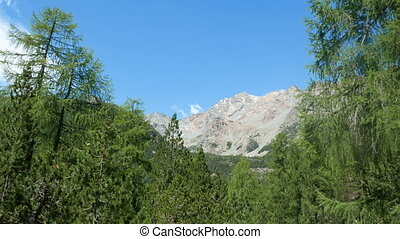 Mountains landscape in spring in Valtellina