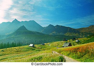 Mountains landscape. Tatra colorful picture