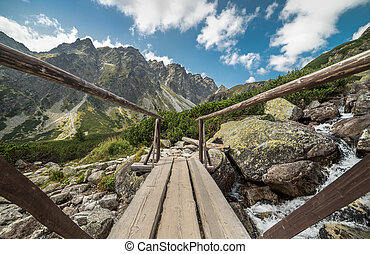 Mountains Landscape with Wood Bridge and Water Cascades