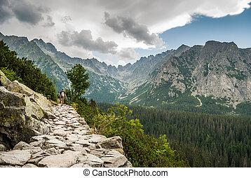 mountains, landskap