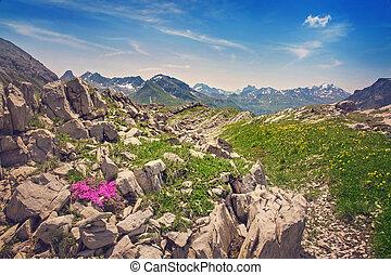 mountains, landskap, in, vorarlberg