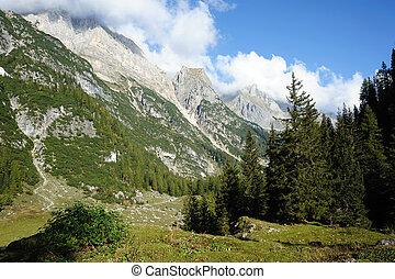 mountains, och, skog