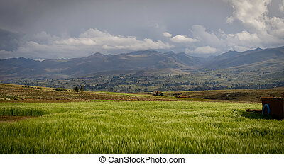 Mountains of Bolivia, altiplano, desert and green landscapes...