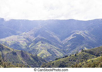 mountains of the coffee cultural landscape in Colombia. Traveling