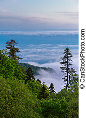 Mountains over the clouds