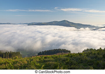 Mountains over the fog in the spring sunrise
