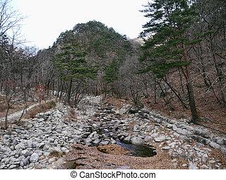 Mountains river in Seoraksan National Park. South Korea