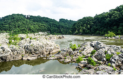 Mountains, Rivers, Rocks, Trees