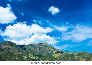 Mountains sandstone and trees with blue sky landscape