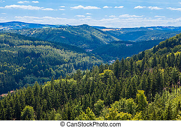 Mountains scenery. Panorama of grassland and forest in...