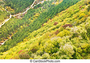 mountains slope of gorge ashlama-dere in Crimean mountains...