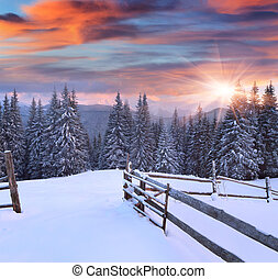 Mountains, Soluppgång, Vinter, färgrik