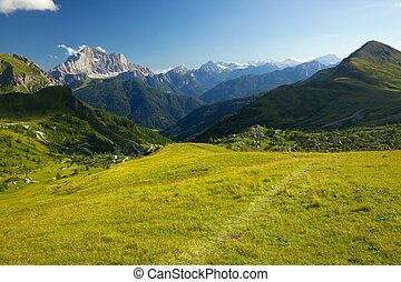 Mountains - Green alpine field in the Dolomites