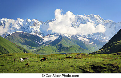 Mountains on blue cloudy sky background. Landscape