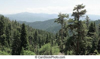 Mountains view in the Borjomi Kharagauli national park - Georgia
