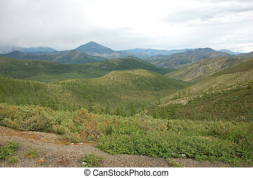 Mountains with taiga at Yakutia, Russia