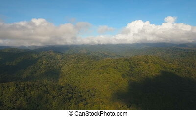 Mountains with tropical forest. Philippines Catanduanes island.