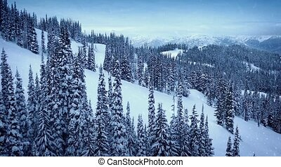 Mountainside Aerial In Snowfall