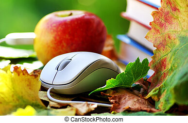 Mouse and red apple on leaves.
