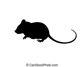 Mouse silhouette icon Vector Design. Vector illustration of Mouse