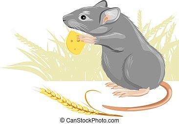 Mouse with a piece of cheese and spikelet