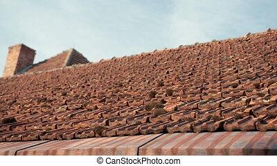 mousse, envahi, ancien, tuiles, château, vieux, rouges, toit
