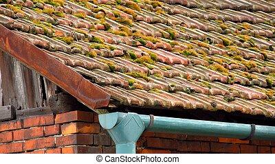 mousse toit vieux serbie toit moulin rivi re gradac photo de stock rechercher images et. Black Bedroom Furniture Sets. Home Design Ideas