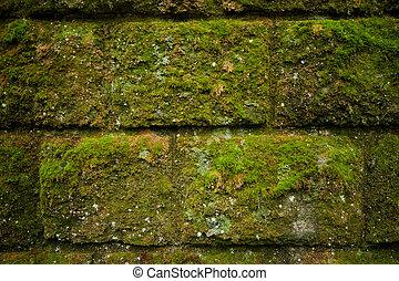 antiquit mur pierre ruine texture mousse laterite antiquit mur pierre ruine mousse. Black Bedroom Furniture Sets. Home Design Ideas