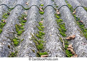 images de mousse toit ardoise gris toit france lichen mousse csp1151948 rechercher. Black Bedroom Furniture Sets. Home Design Ideas
