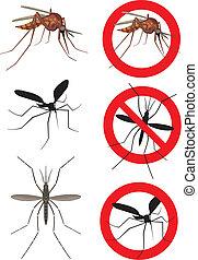 moustique, (culex), moustiques