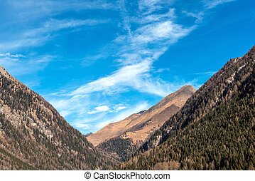 moutain - mountain landscape located in South Tirol in Italy