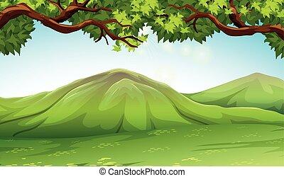 moutains, scène, bomen