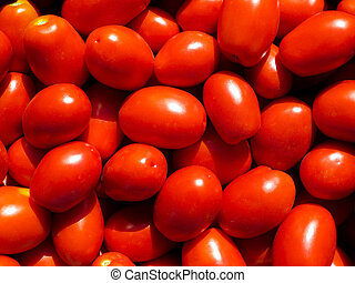 Mouth-watering red plum tomatoes on the market.