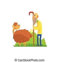 mouton, berger, herding, vieux, pâturage vert