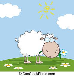 mouton, blanc, caractère, dessin animé