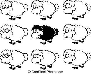 mouton, différent, noir