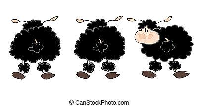 mouton, group., noir