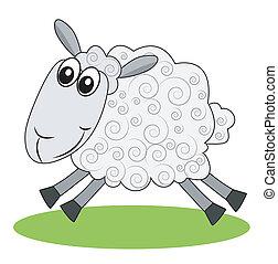 mouton, hâtes, pelouse, vert