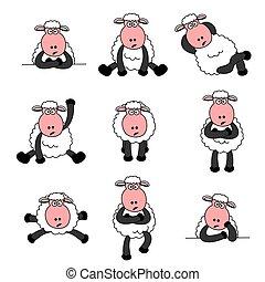 mouton, mignon, ensemble
