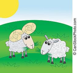 mouton, pelouse, marteau, vert, joyeux