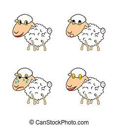 mouton, rigolote, différent, exprimer, émotions
