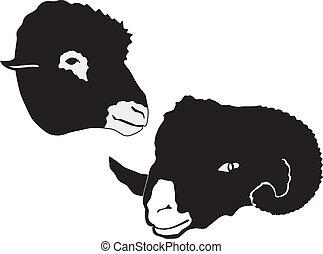 mouton, silhouette